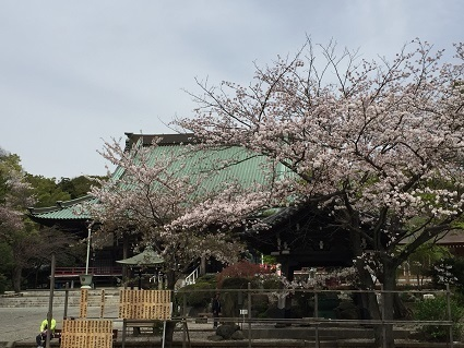 160410yugyoji4.jpg